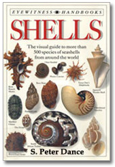 Shell Book Dance